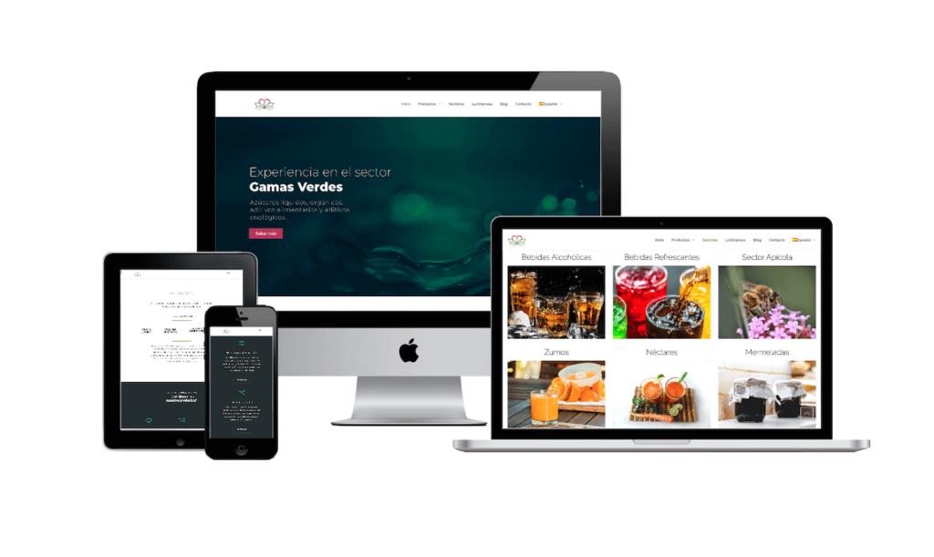 pagina web en galicia